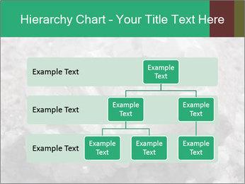 0000081737 PowerPoint Templates - Slide 67