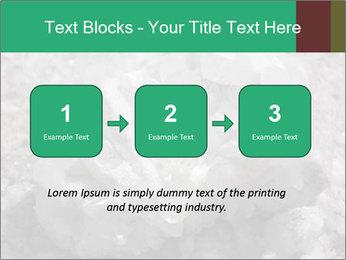 0000081737 PowerPoint Templates - Slide 71
