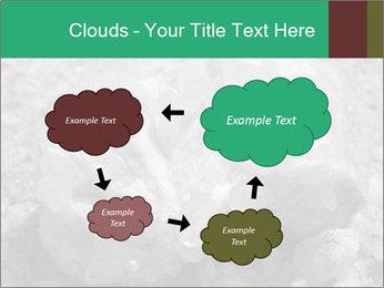 0000081737 PowerPoint Templates - Slide 72