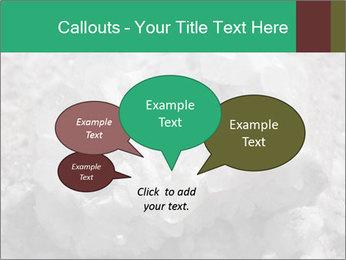 0000081737 PowerPoint Templates - Slide 73