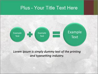 0000081737 PowerPoint Templates - Slide 75
