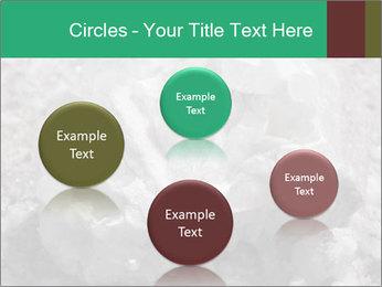 0000081737 PowerPoint Templates - Slide 77