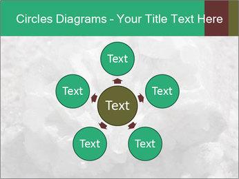 0000081737 PowerPoint Templates - Slide 78