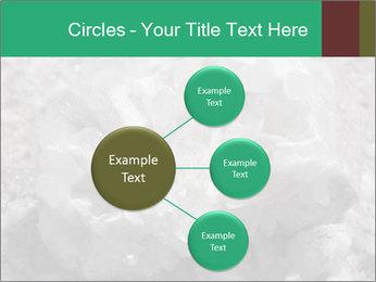 0000081737 PowerPoint Templates - Slide 79