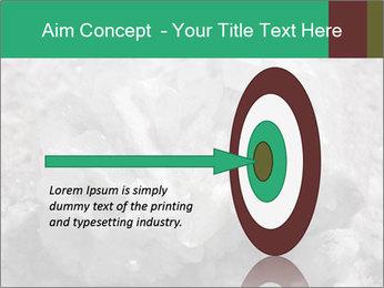 0000081737 PowerPoint Templates - Slide 83