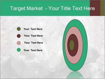 0000081737 PowerPoint Templates - Slide 84