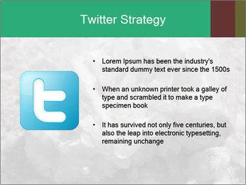 0000081737 PowerPoint Templates - Slide 9