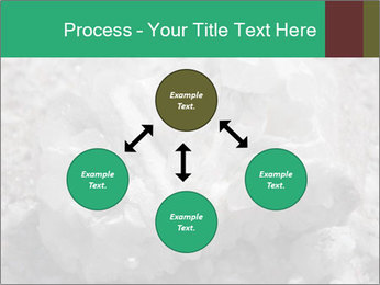 0000081737 PowerPoint Template - Slide 91