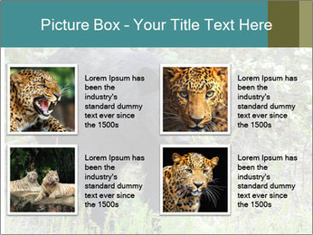 0000081738 PowerPoint Template - Slide 14