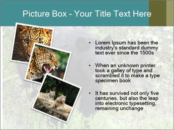 0000081738 PowerPoint Templates - Slide 17