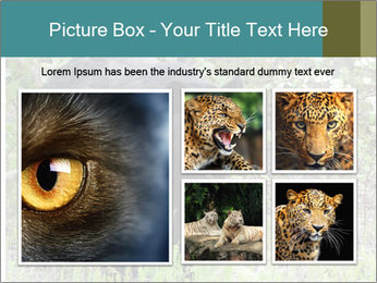 0000081738 PowerPoint Templates - Slide 19