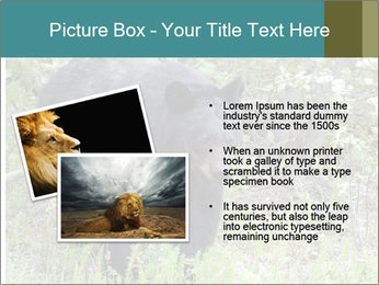 0000081738 PowerPoint Templates - Slide 20
