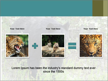 0000081738 PowerPoint Template - Slide 22