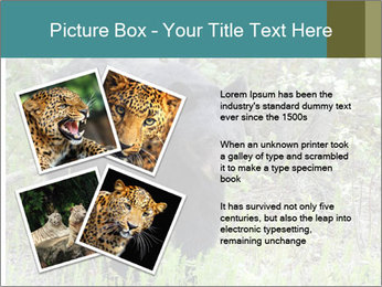 0000081738 PowerPoint Templates - Slide 23