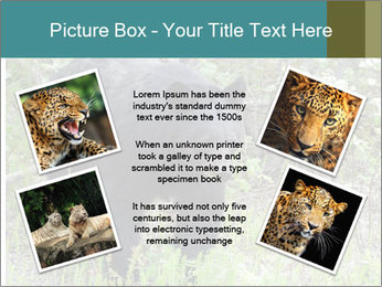 0000081738 PowerPoint Templates - Slide 24