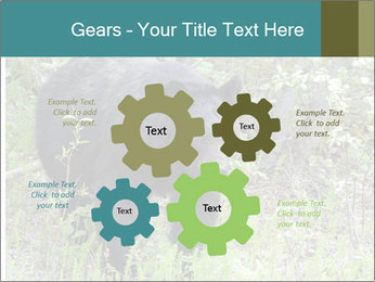 0000081738 PowerPoint Template - Slide 47