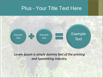 0000081738 PowerPoint Template - Slide 75