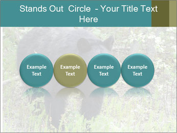 0000081738 PowerPoint Template - Slide 76