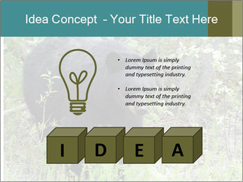 0000081738 PowerPoint Template - Slide 80