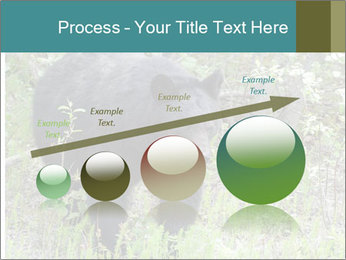 0000081738 PowerPoint Template - Slide 87