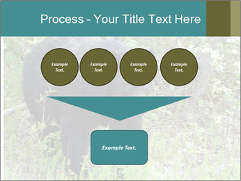 0000081738 PowerPoint Template - Slide 93