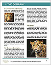 0000081738 Word Template - Page 3