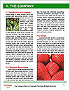 0000081741 Word Template - Page 3