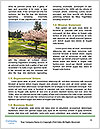 0000081745 Word Templates - Page 4