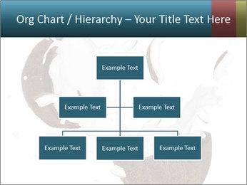 0000081747 PowerPoint Templates - Slide 66