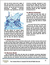 0000081747 Word Templates - Page 4