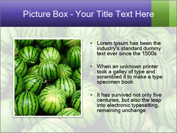 0000081751 PowerPoint Templates - Slide 13