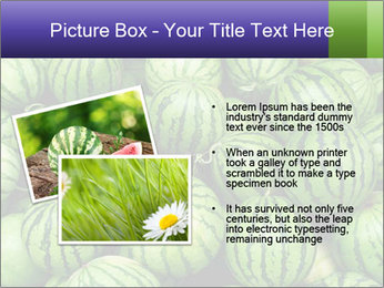0000081751 PowerPoint Templates - Slide 20