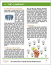 0000081753 Word Template - Page 3