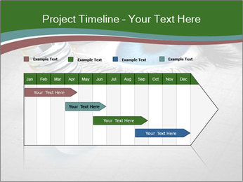0000081761 PowerPoint Template - Slide 25