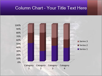 0000081789 PowerPoint Templates - Slide 50