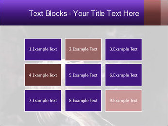 0000081789 PowerPoint Templates - Slide 68
