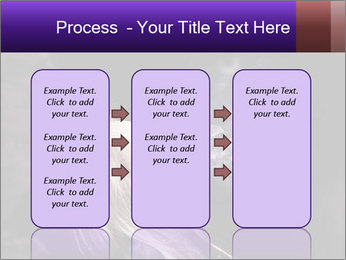 0000081789 PowerPoint Templates - Slide 86