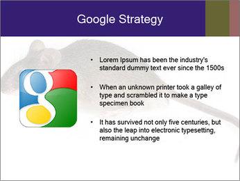 0000081791 PowerPoint Templates - Slide 10