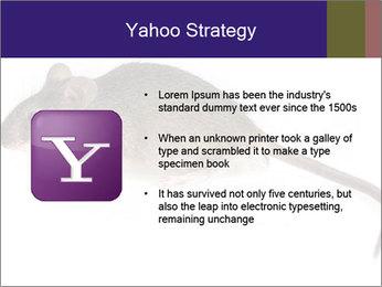 0000081791 PowerPoint Templates - Slide 11