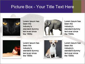 0000081791 PowerPoint Templates - Slide 14