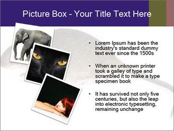 0000081791 PowerPoint Templates - Slide 17