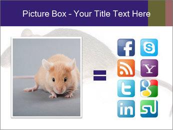 0000081791 PowerPoint Templates - Slide 21