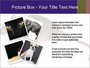 0000081791 PowerPoint Templates - Slide 23