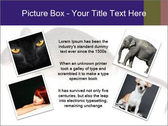 0000081791 PowerPoint Templates - Slide 24