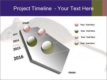 0000081791 PowerPoint Templates - Slide 26