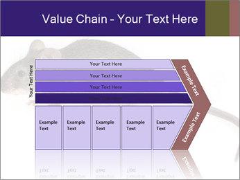 0000081791 PowerPoint Templates - Slide 27