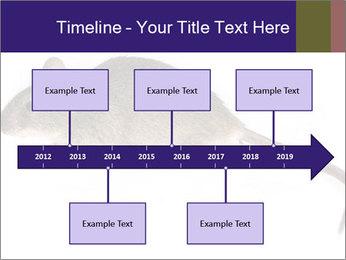0000081791 PowerPoint Templates - Slide 28