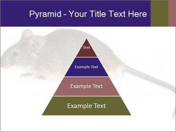 0000081791 PowerPoint Templates - Slide 30