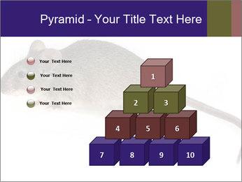 0000081791 PowerPoint Templates - Slide 31