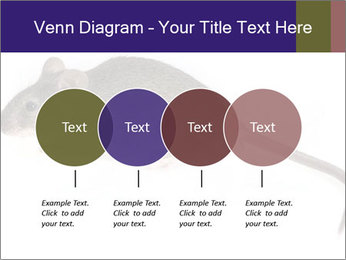 0000081791 PowerPoint Templates - Slide 32